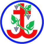 Logo Jungschi