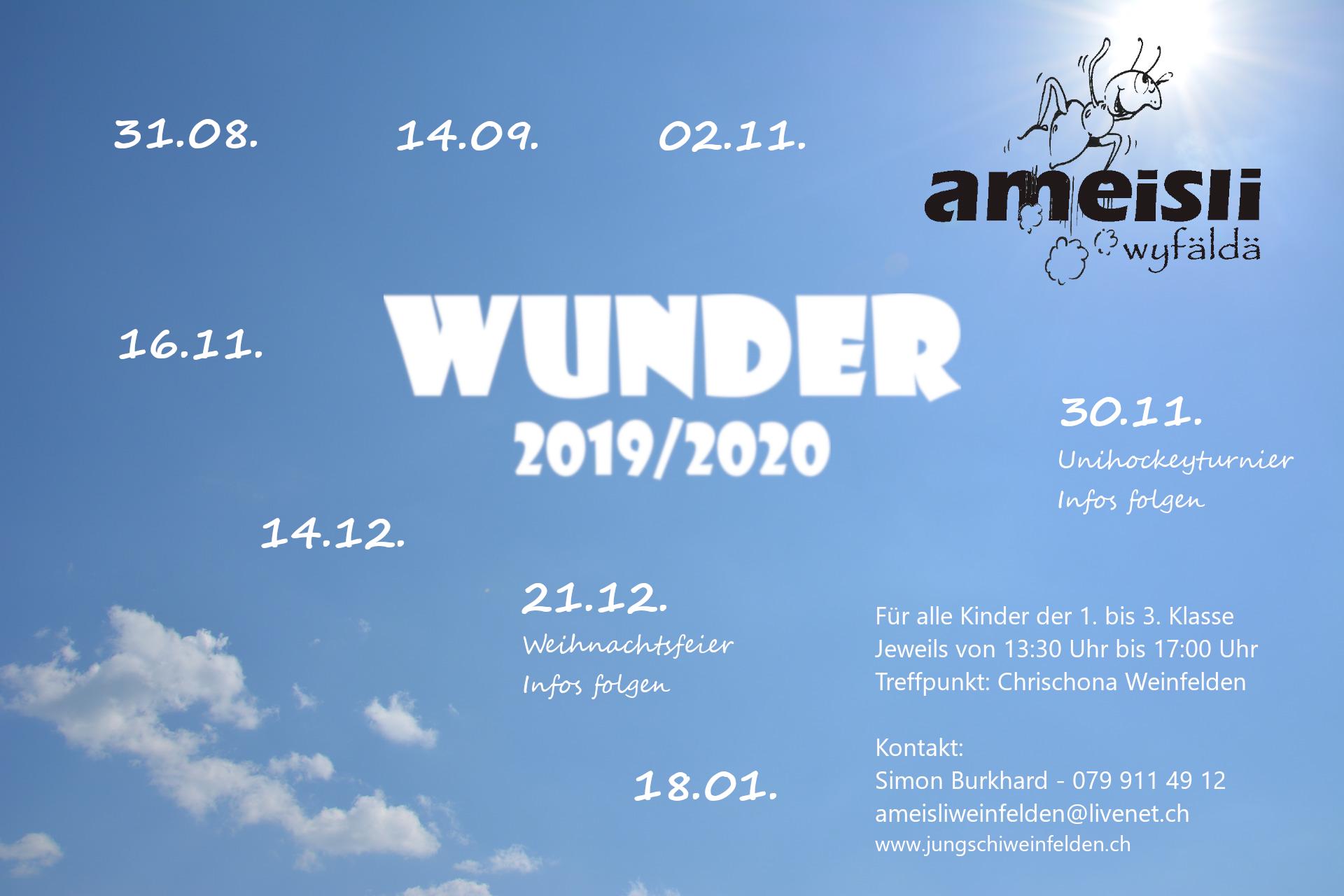 Ameisl Flyer 2019/2020